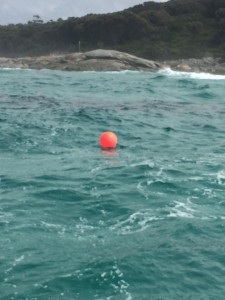 The Anmaropa wreck at the mouth of Georges Bay is marked by a pink buoy.