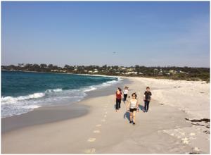 University of Tas 2nd Year Medical Students walk the pristine Binalong Bay beach